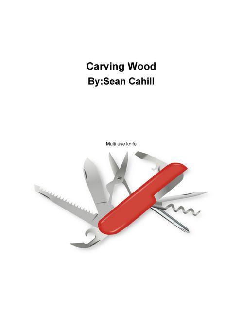 InformationalWriting-SeanCahill