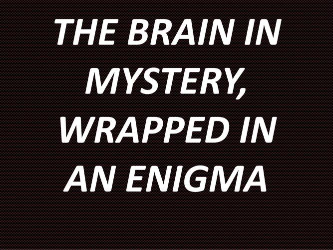 THE BRAIN IN MYSTERY,