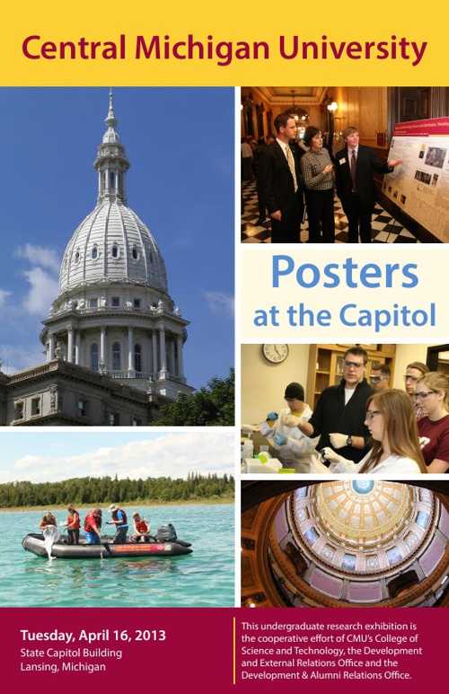 Posters at the Capitol 2013