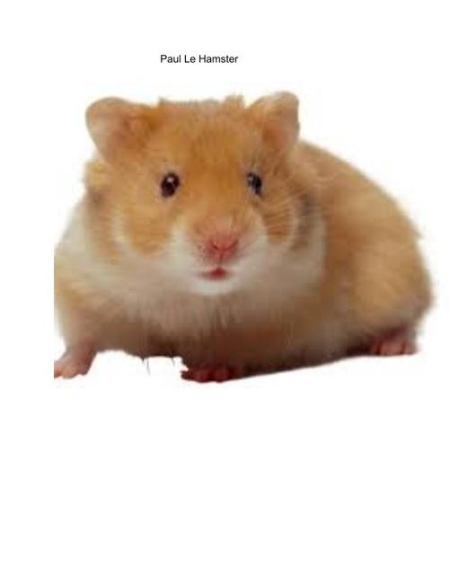 Paul Le Hamster