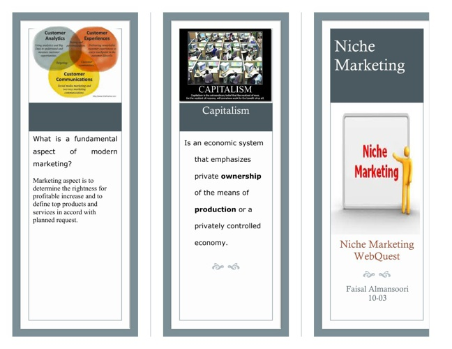 Niche Marketing WebQuest