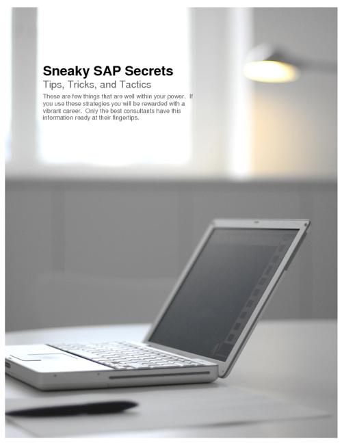 Sneaky SAP Secrets
