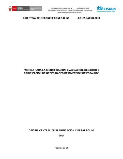 Directiva 010
