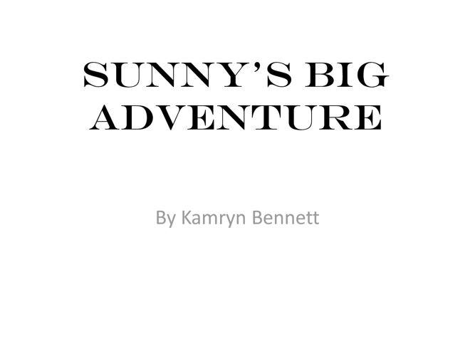 Sunny's Big Adventure