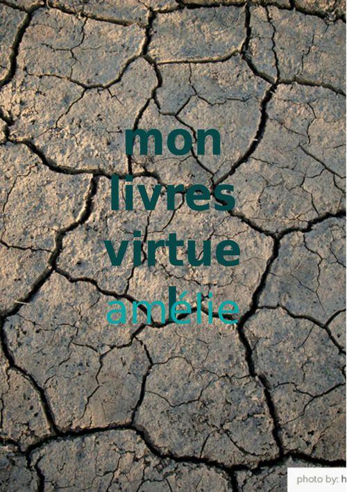 mon livre virturl