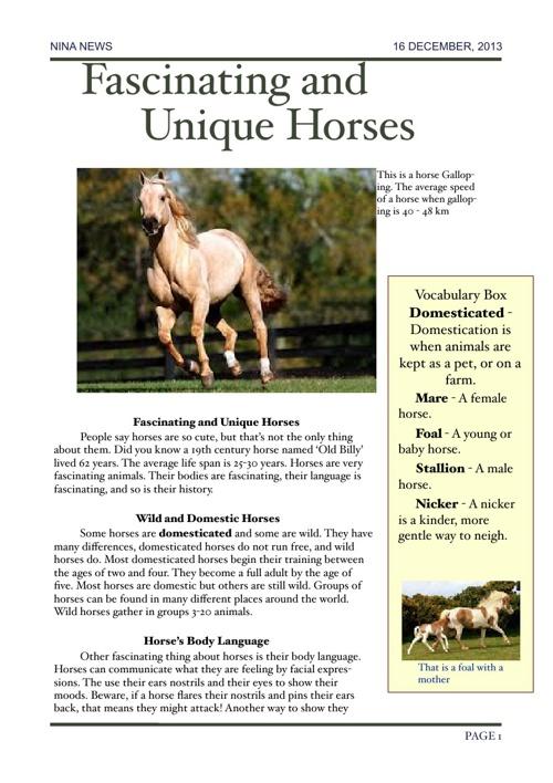 Nina News- Horses