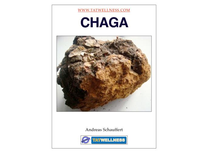 Chaga-Birch Muschroom