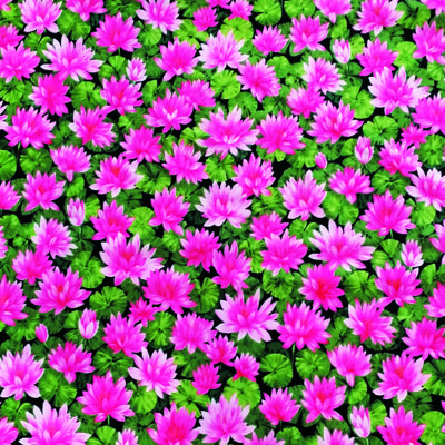 Circulos de flor