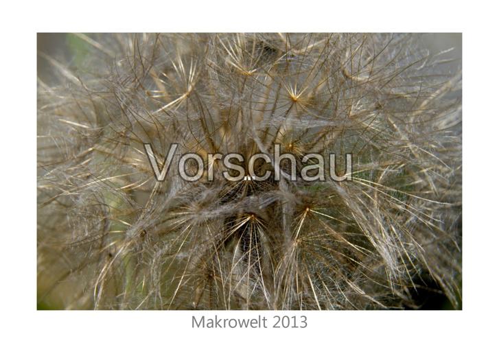 Kalender Makrowelt 2013