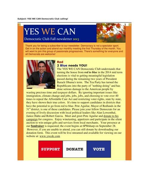 YWCDC Newsletter