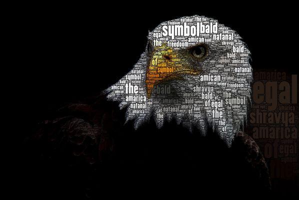 Whitfield: App Smashing / Wordfoto and Tellagami: US Symbols