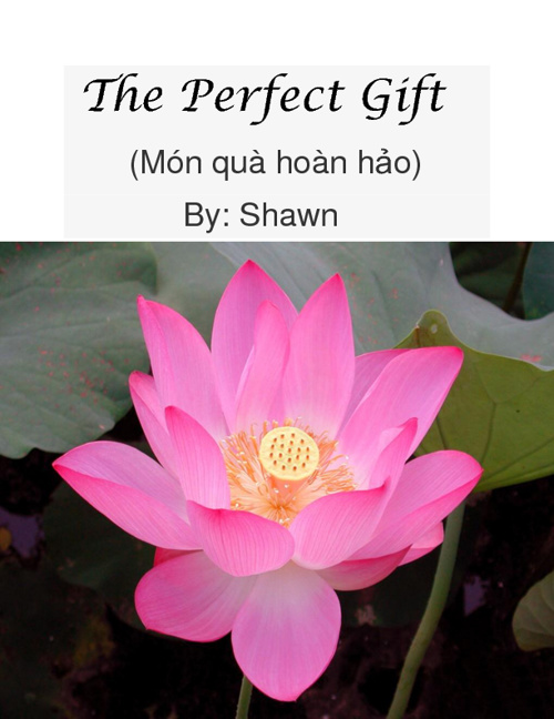 The Perfect Gift by Shawn