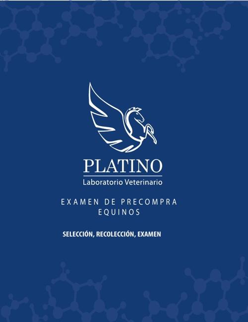 Examen de PreCompra Equinos