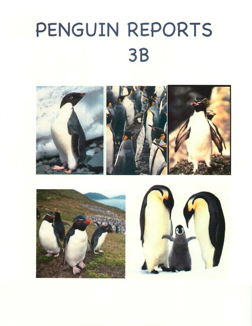 Penguins 3B