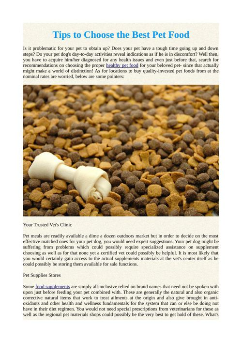 Tips to Choose the Best Pet Food
