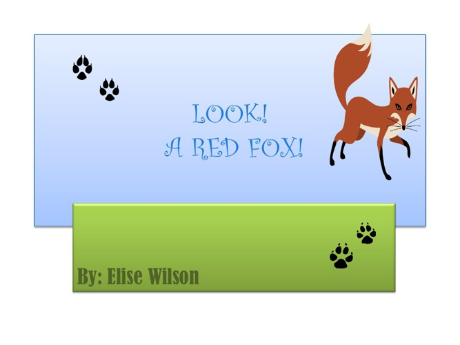 Elise's red fox
