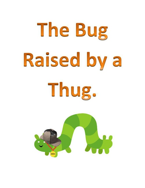 The Bug Raised by a Thug