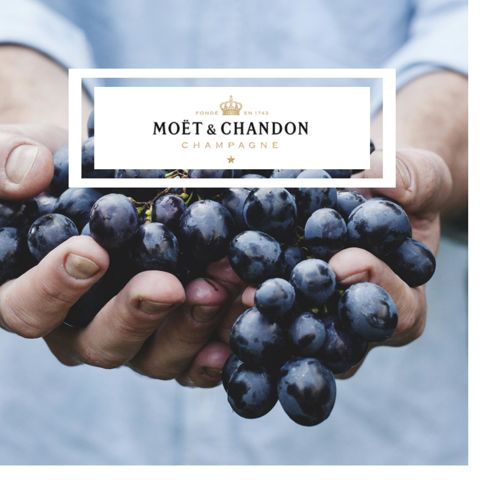 Thomas Preti Caterers for Moet & Chandon