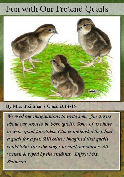 Fun with Our Pretend Quails Book 1