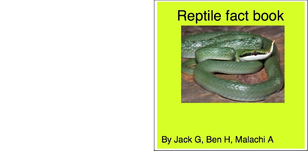 Reptile fact book