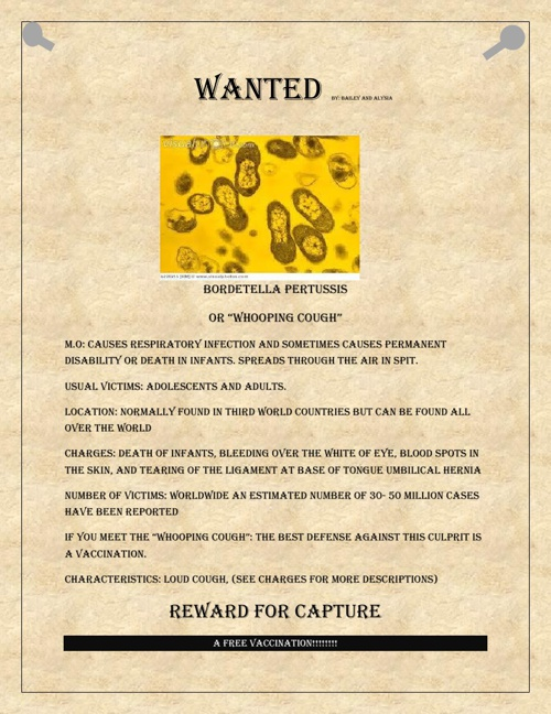 Wanted Bacteria