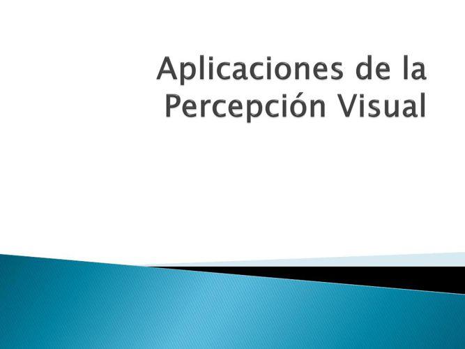 Aplicaciones de la Percepción Visual