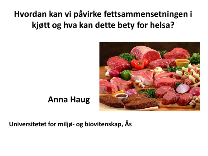 Anna Haug foredrag