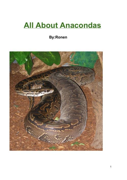 All About Anacondas