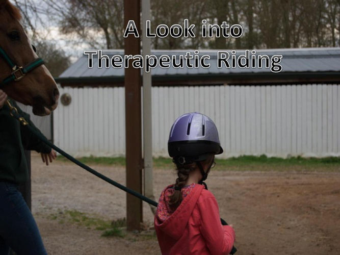 Visual of Therapeutic Riding