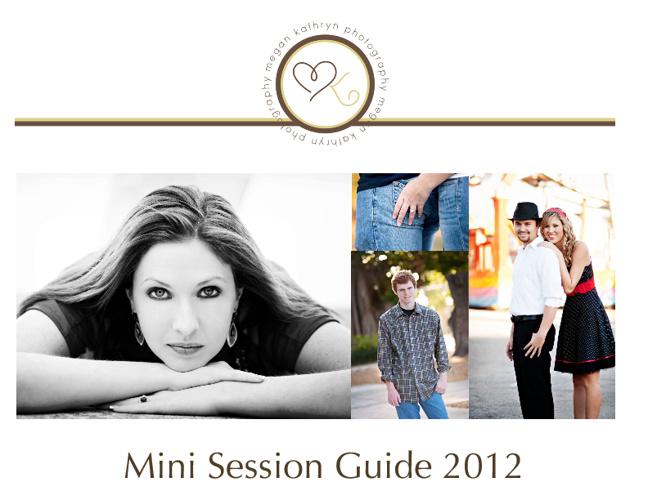 Megan-Mini Session Guide