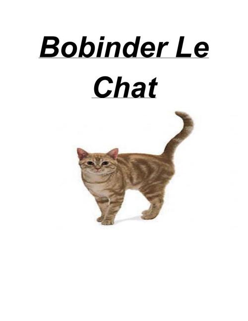 FrenchBooklet