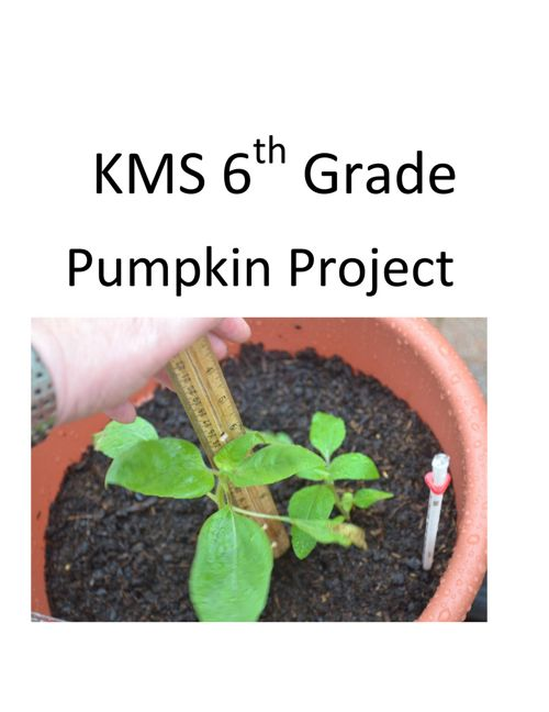 KMS 6th Grade Pumpkin Project