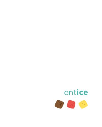 Entice Recipe Book