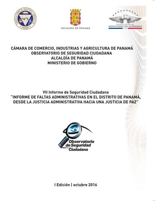 VII Informe de Seguridad Ciudadana