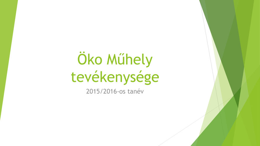 okoevvegi2015-16