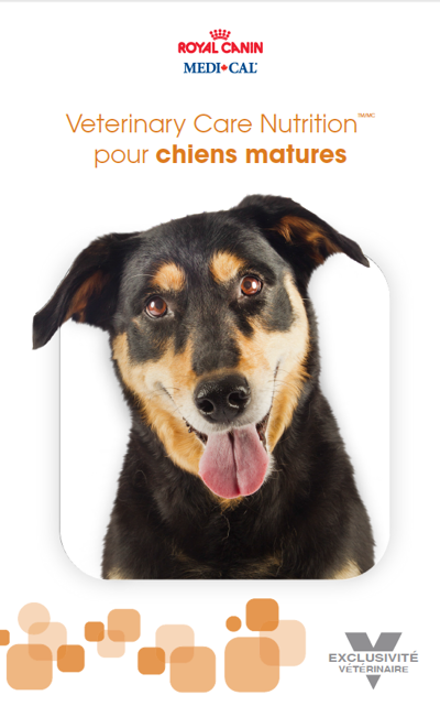 FR_SKW377_ Canine_Mature