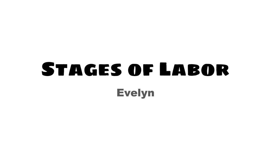 Delivery Options and Labor Lecture - Evelyn Araujo