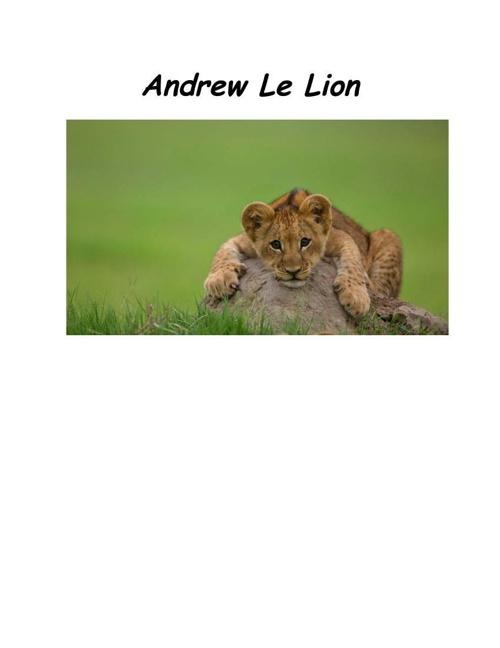 Andrew Le Lion
