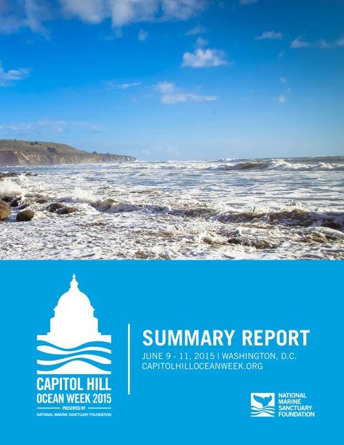 2015 CHOW Summary Report