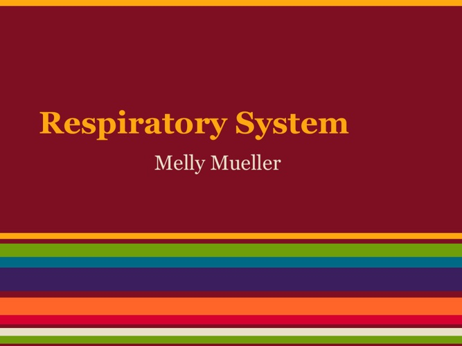 Respitory System