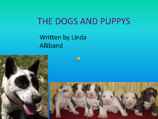 New FlipDOGS AND PUPPIES