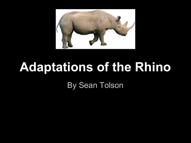 adaptations of the rhino