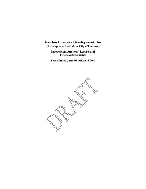 HBDi 2012 Audit Report