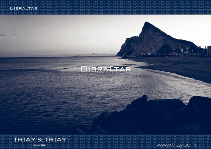 Triay & Triay Presentations