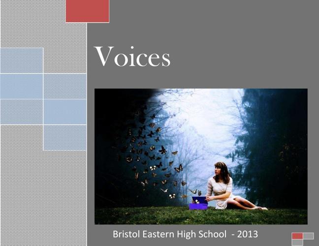 Voices 2013
