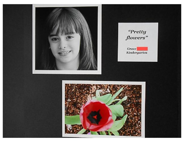 Kindergarten: Photography Project