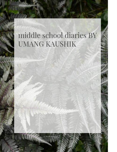 middle school diaries umang kaushik writing portfolia