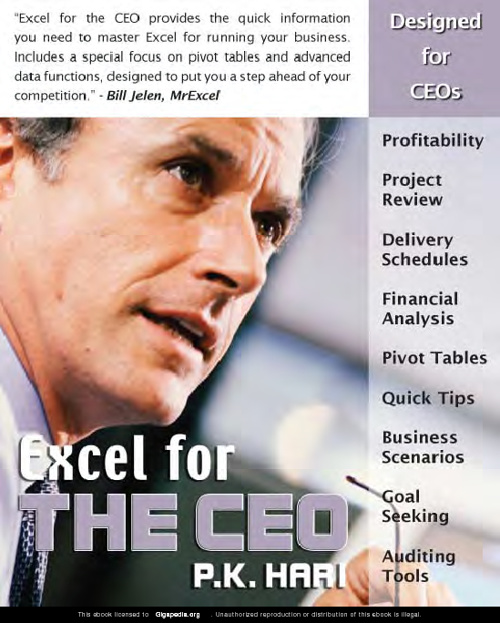 Excel CEO - Adding Interactivity and Publishing Reports