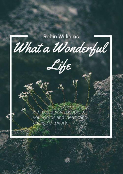 Robin Williams Biography Essay