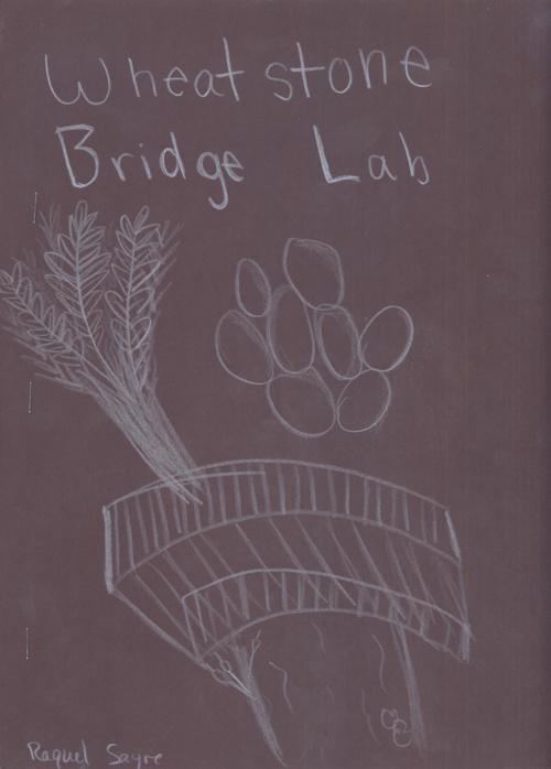 Wheatstone Bridge Cover